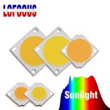 10W 20W 30W 50W 100W Crescere COB Circuito Integrato del LED Spettro Completo di Sole FAI DA TE Luce Del Sole per la Coltura Idroponica Dellinterno Impianto Orticoltura