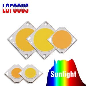 Image 1 - 10W 20W 30W 50W 100W rosną COB Chip LED pełne spektrum słońca DIY światło słoneczne dla domowa hydroponiczna roślina warzywa rosnące