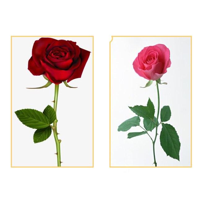 Machine à couper les tiges de Rose