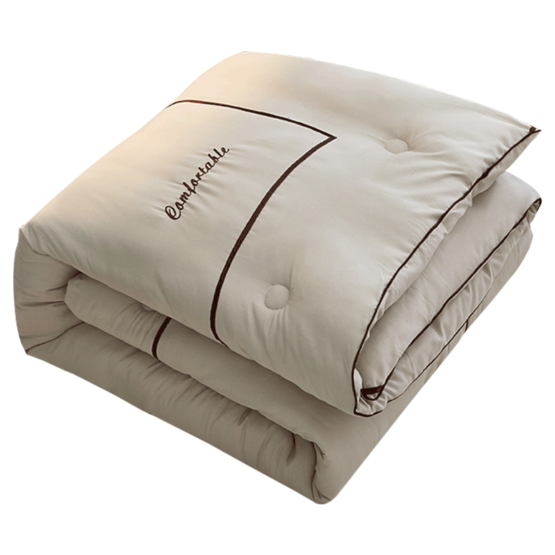 SF High Grade Winter Down Comforter Filler Simple Style Winter Warm Duvet Quilt 4kg Weight 2.2*2.4M New Design Comforter Blanket