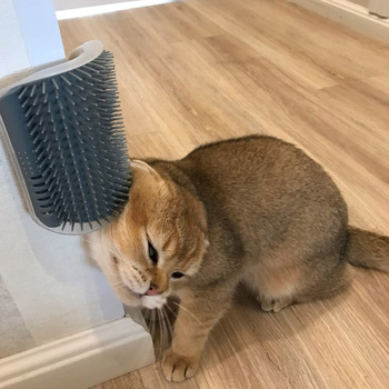 Cats Brush Corner Cat Massage Self Groomer Comb Brush Cat Rubs the Face with a Tickling Comb Cat Product Dropshipping 1