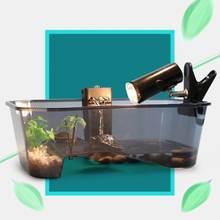 Для вивария для рептилий коробочка черепахи с рампой аквариума