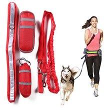 купить Pet Running Leash Dogs Running Leash pets leash Pet Products pet traction rope Dog Leash Pet Supplies D30 дешево