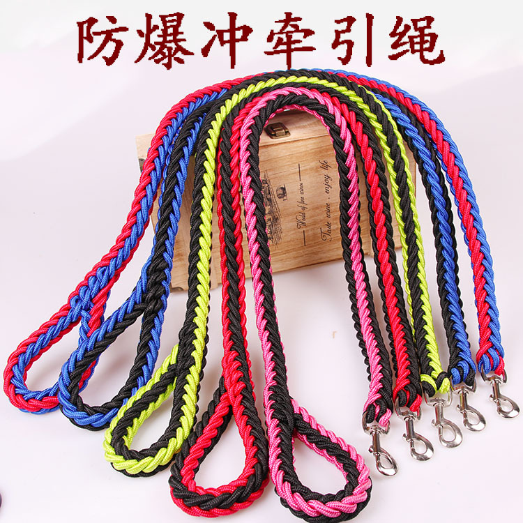 Dog Rope Medium Large Dog Dog Hand Holding Rope Golden Retriever Pet Dog Chain Pet Supplies