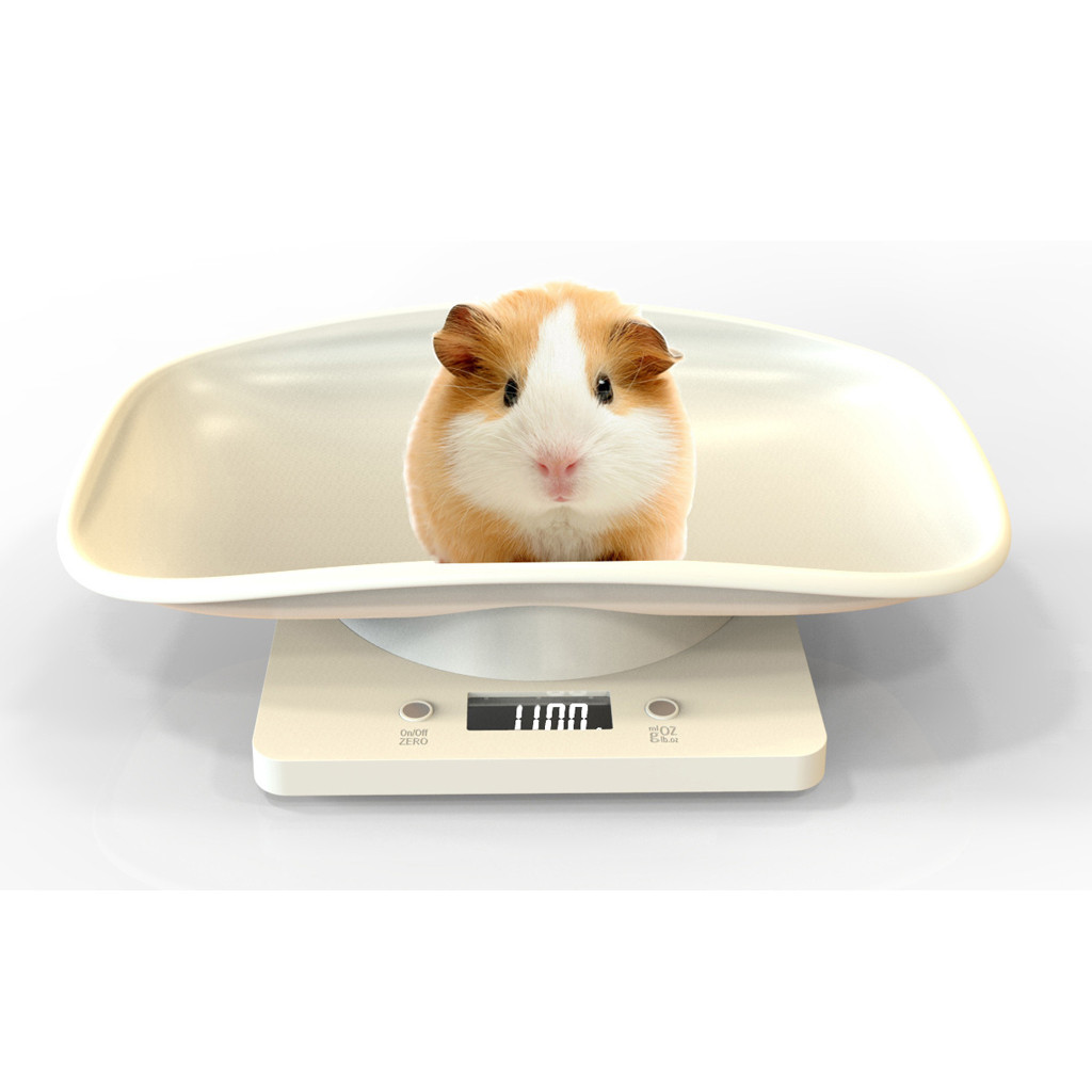 Brand New And High Quality Digital Pet Scale LCD Electronic Scales for Measure Pet High Precision Pet 1 Pet Scal Small Pet#19718