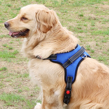 New Pet Chest Strap Explosion-proof Dog Breathable Mesh Harness Leash With Adjustable Straps Supplies
