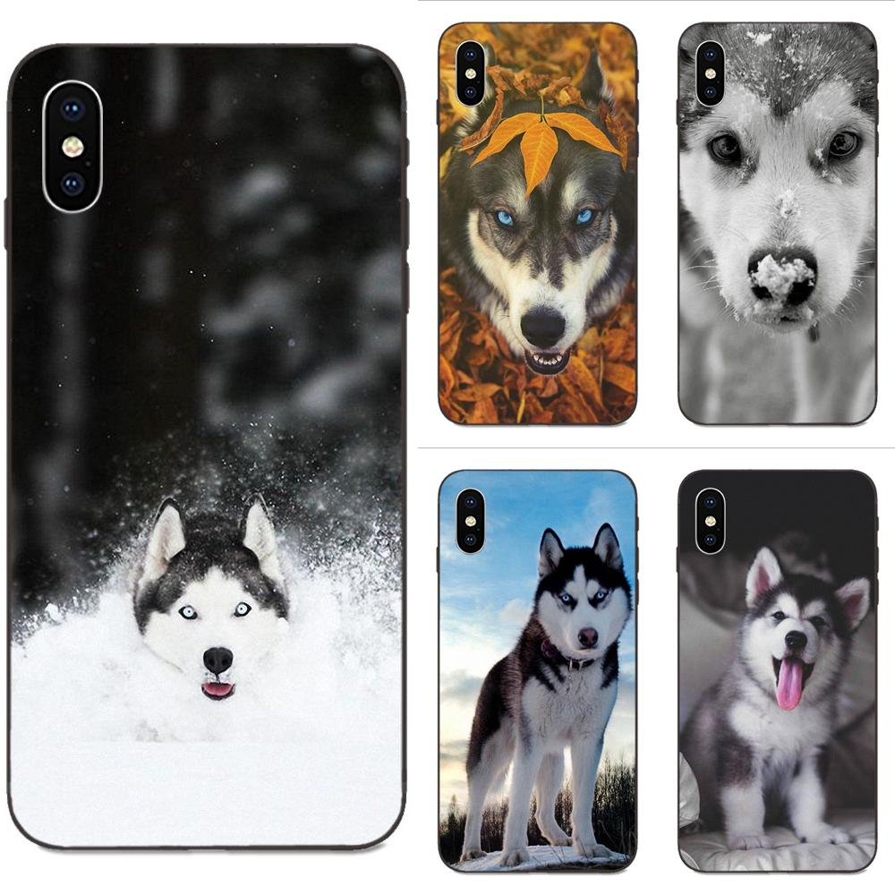 <font><b>Siberian</b></font> <font><b>Husky</b></font> Dog Puppies Newest Phone Cases For Huawei Honor 5A 6A 6C 7A 7C 7X 8 8A 8C 8X 9 9X 10 10i 20 Lite Pro image