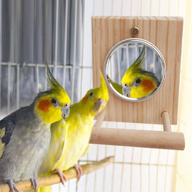 10 * 12 Cm Mirror Stand Pet Funny Parrot Bird Toy Mirror Toy Accessories  for Parrot Bird  Pet Parrot  Cage Pet Supplies 1