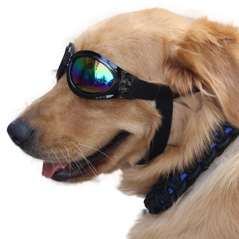 Online Celebrity Pet Glasses Dog Sunglasses Douyin Funny Sun Glasses Mask Dog Protective Equipment Glasses