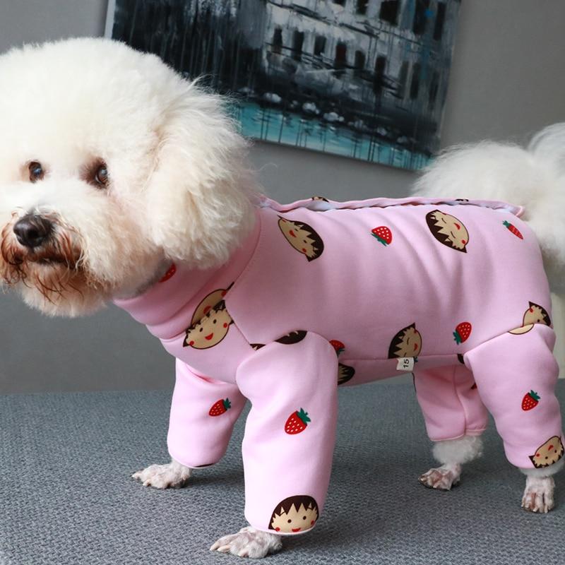 cães pequenos proteger pijamas de barriga chihuahua casaco