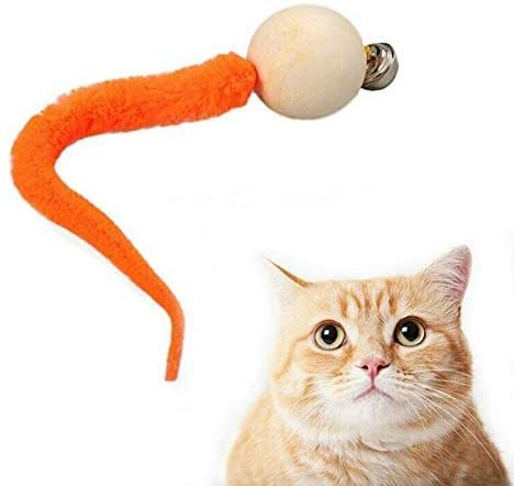 Wiggly Cat Toy 1