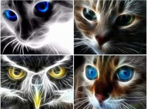 Pintura diamante gato pintura com diamante redondo completo bordado animais imagem de strass mosaico diamante desenhos animados decoração da parede