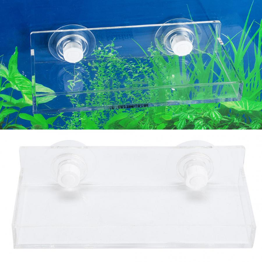 Aquarium Plants Seeds Acrylic Water Plant Landscaping Breeding With Suction Cup For Fish Aquarium(China)
