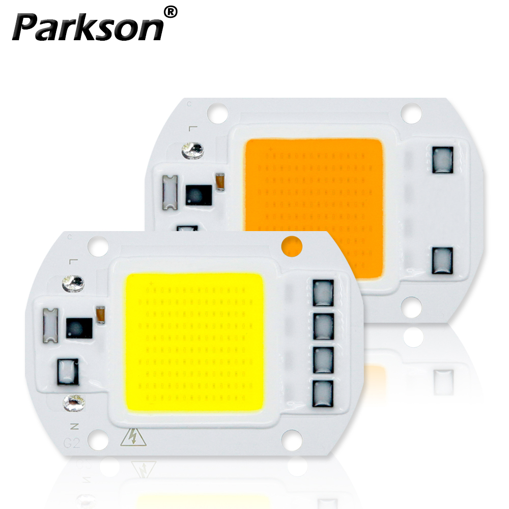 COB LED Lamp Chip Real 50W 30W 20W 10W 3-9W AC 220V 240V LED COB Lamp Bulb No Need Driver For LED Spotlight Floodlight Chip