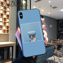 Funny Lovely Cat Pretty Colorful Cute Phone Case For iPhone 8 7 6 6S Plus X XS MAX 5 5S SE XR 11 11pro promax Coque Shell shopping girl enjoying life colorful cute phone case for iphone 8 7 6 6s plus x xs max 5 5s se xr 11 11pro promax coque shell