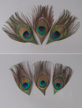 10pcs / Bag Natural Peacock Feather Quilt Size Eyes DIY Corsage Headdress Clothing Accessories Design Decoration