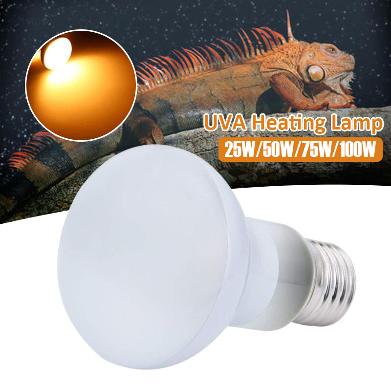 Crawler Lamp 110V Reptile Practical Heating Lamp Sun Lamp 100W UVA White Brooder Snake Lizard 50W 25W 75W Turtle