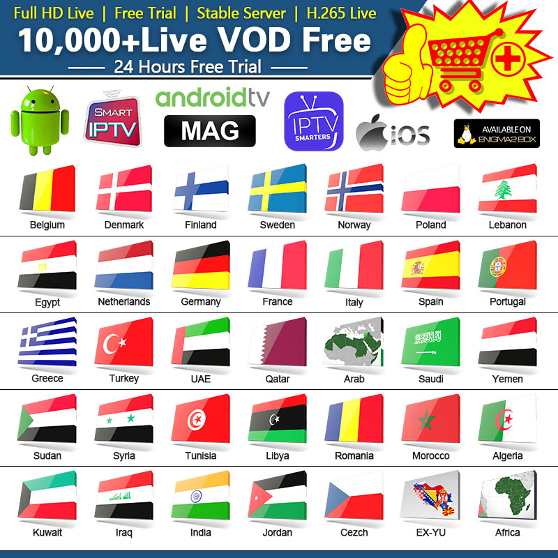 IPTV France Spain Germany Sweden Arabic Belgium NETV Datoo IPTV Subsription For IPTV M3u Netherlands Dutch IP TV Portugal Code