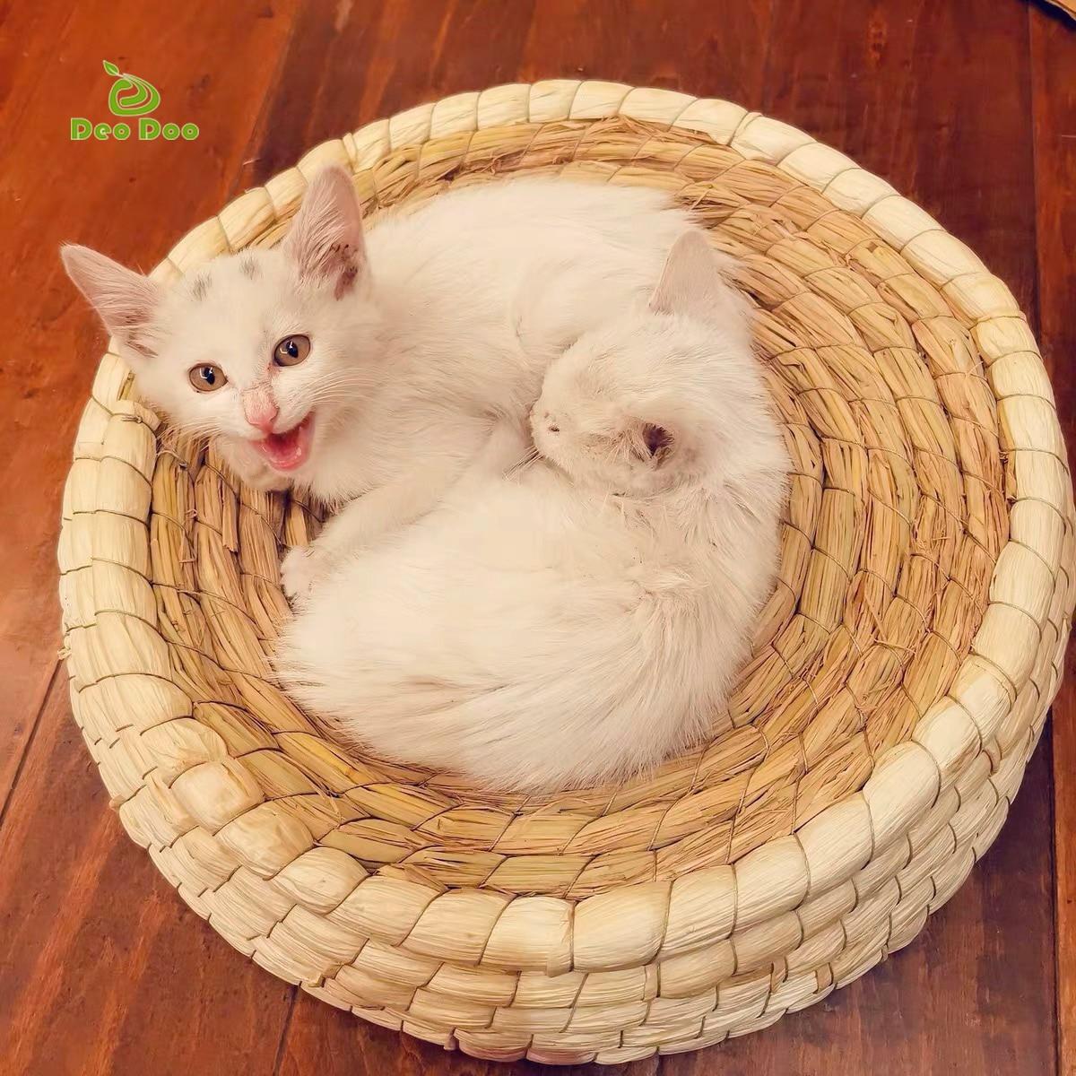 Ручной работы кровать Cat биоразлагаемые ПЭТ Плетеный соломенный кровать щенок питомник кошек гнездо котенок царапин спальный коврик для до...