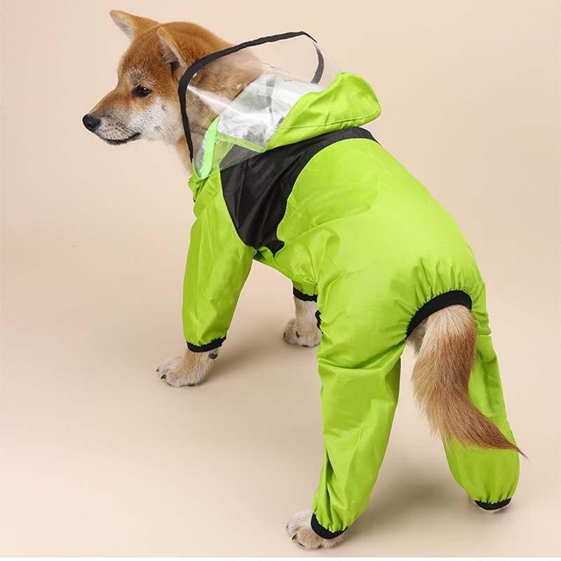 Köpek yağmurluk