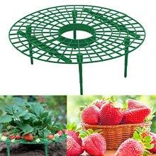 Erdbeere Stehen Rahmen Gemüse Rack Reben Säule Gartenarbeit Stehen Faltbare, Halten Obst Erhöhten zu Vermeiden Boden Rot