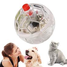 Świecące przeźroczyste tworzywo sztuczne piłka dla kota zwierzęta interaktywna zabawka piłka dla kota zabawki dla kota interaktywne artykuły dla zwierząt piłka zabawki dla kota zabawna piłka dla kota tanie tanio Piłki Z tworzywa sztucznego