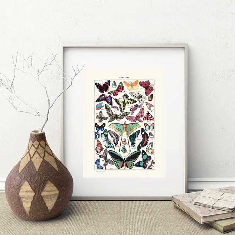 Affiche papillon Vintage Antique | Imprimés insectes Nature, éducation murale, toile d'art, tableau, décoration murale pour chambre d'enfants, décor pour maison