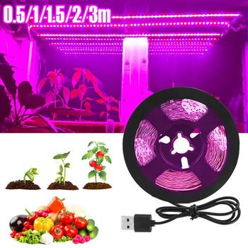 LED Grow Light Full Spectrum USB Grow Light Strip 0.5m 1m 2m 2835 Chip LED Phyto Lamp for Plants Flowers Greenhouse Hydroponic 5m led grow light strip full spectrum uv lamps for plants waterproof phyto lamp red bluetape for greenhouse grow tent hydroponic