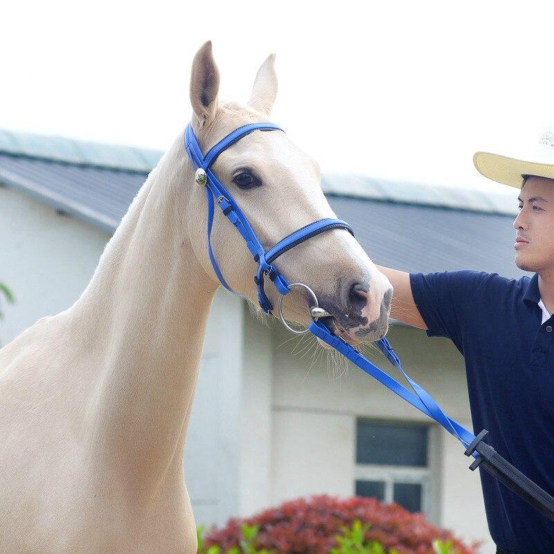 Collier de tête de cheval Durable licou cheval équitation bride équipement d'équitation licou PVC cheval accessoires équestres