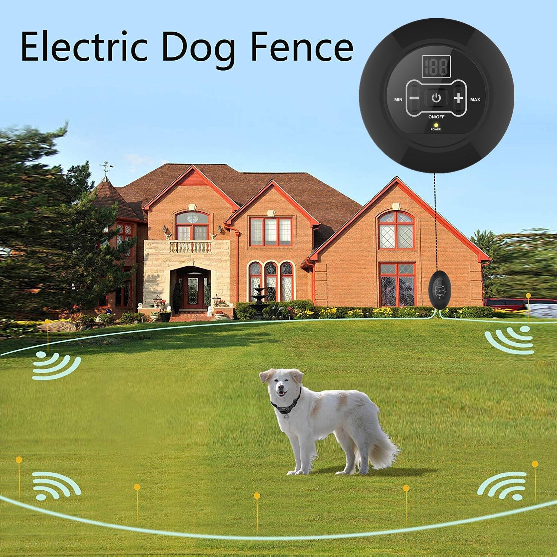 Electronic Fence 2019 New Style Pet Wireless Pet Training Device zhi fei qi Pet Supplies