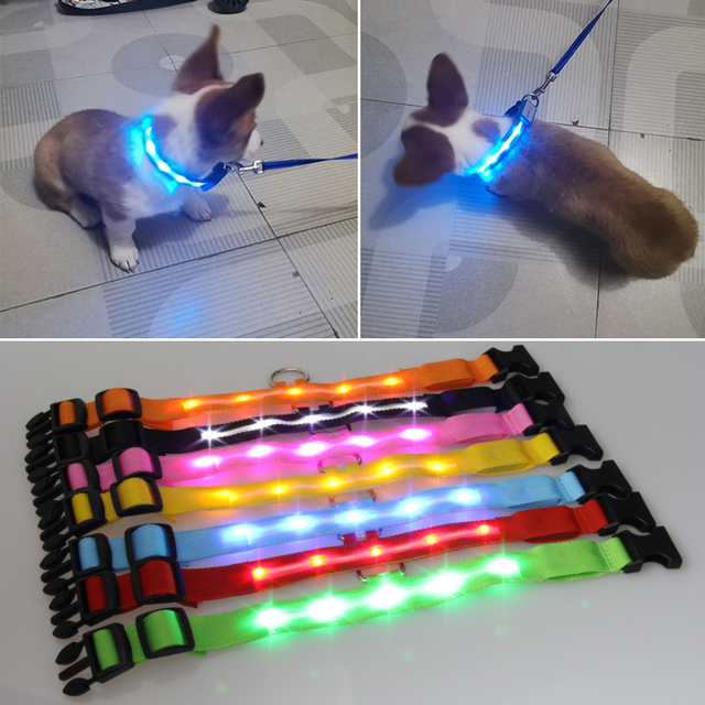 Glowing Pendant LED Night Safety Dog Collar 2