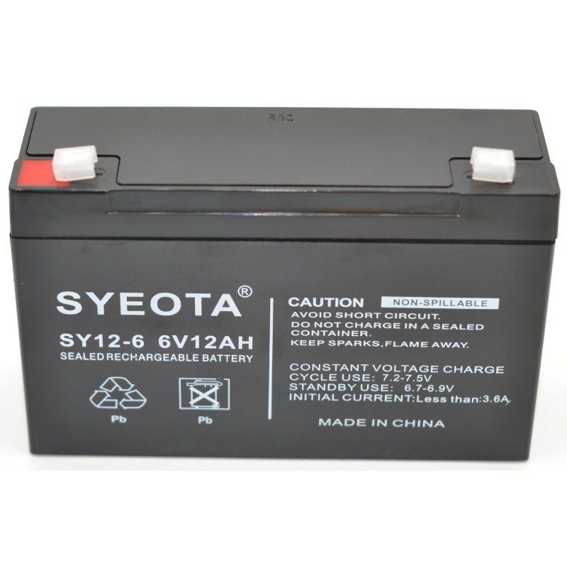 Lead Battery 6 V/12Ah SY12-6 SY12-6 NP12-6 FG11202 MP12-6 LCR0612P