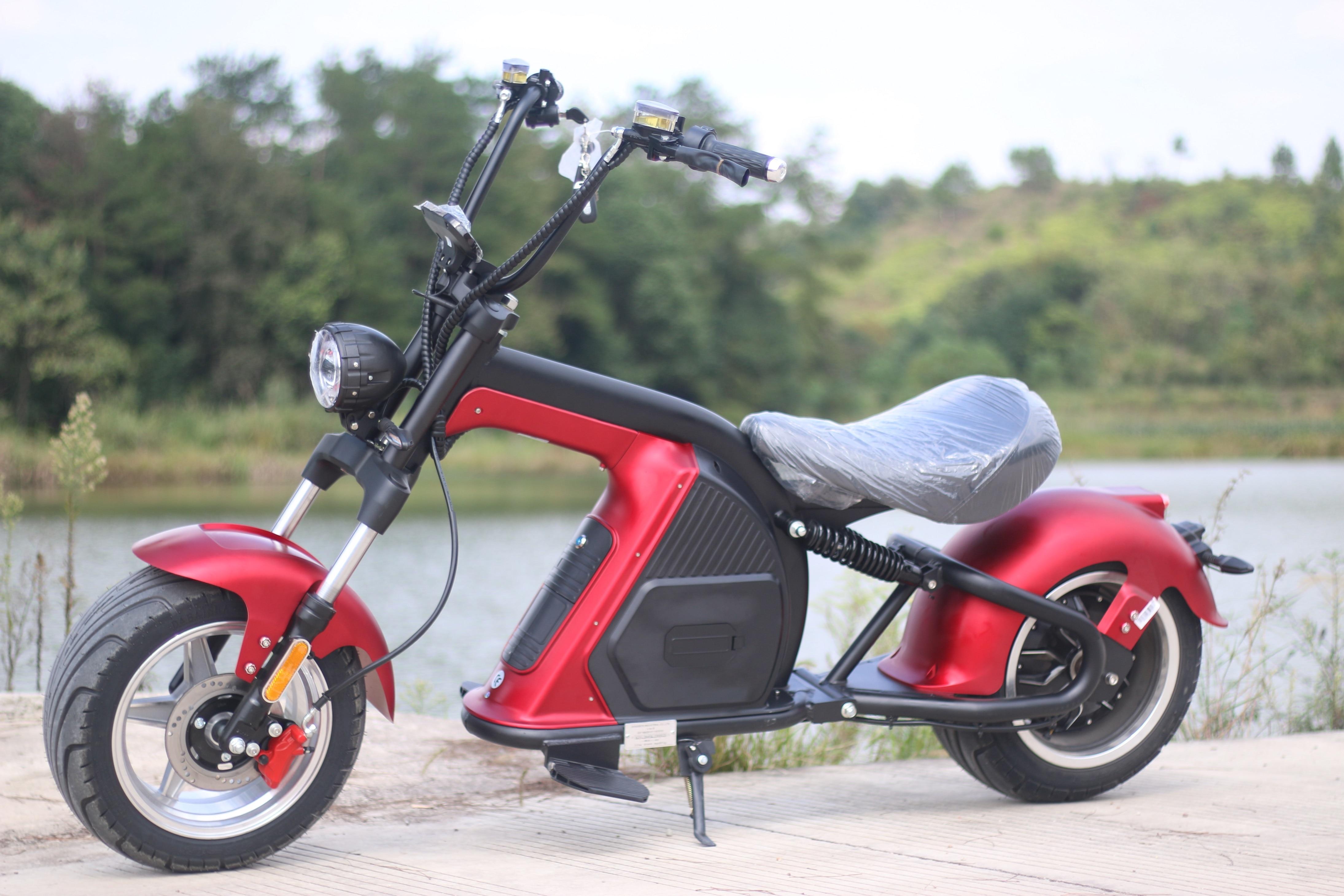 30Ah Европа США склад EEC/COC 2-колесный электрический скутер мотоцикла Citycoco 2000W60V съемный Батарея, способный преодолевать Броды для взрослых