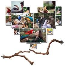 Деревянная подставка для птиц, дикая Виноградная палочка, коракатический попугай, кусающий коготь, шлифовальная игрушка, аксессуары для пт...
