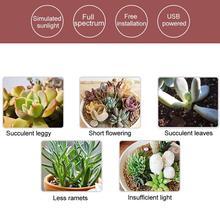Grow-Light Plants-Lamp-Lighting Plant-N5l3 Phyto Full-Spectrum Indoor LED 5V
