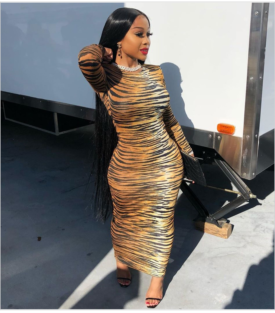 Kylie jenner Inspired Long Tiger Print Jersey Dress Brown and Black Printing Maxi Dress - kylie-jenner-outfits