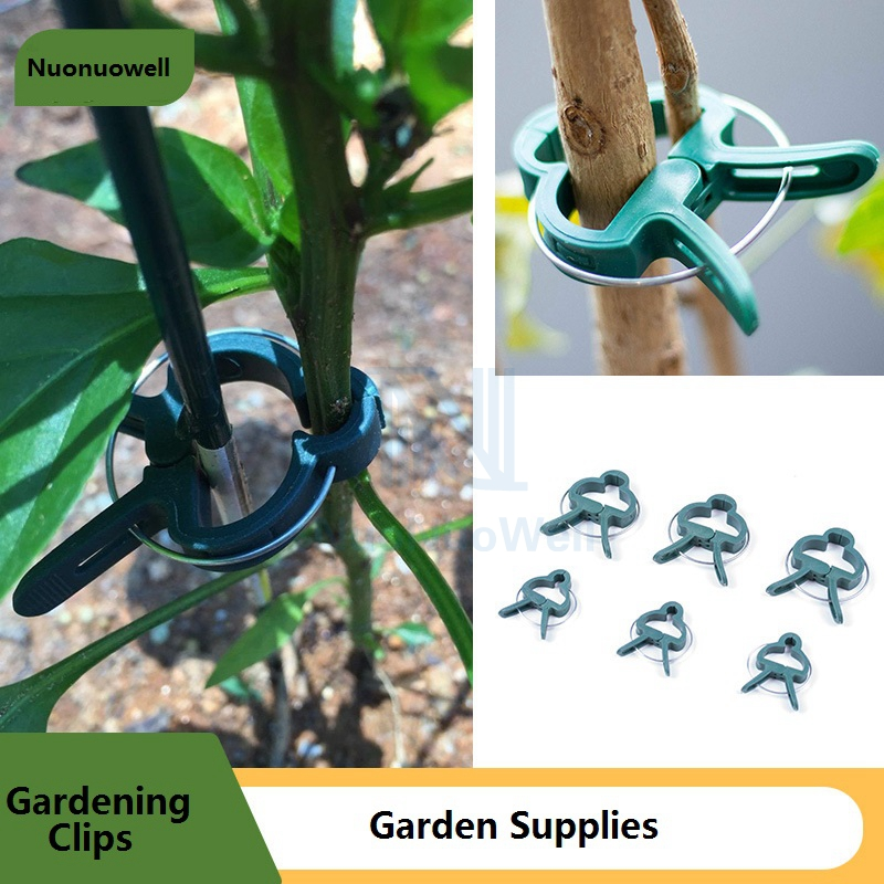 10/20PCS Two Size Gardening Plants Orchid Clip Flower Fixed Bracket Parts Vine Climbing Plant Clamps Grape Branches Holder