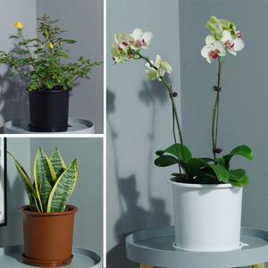 Image 5 - Meshpot 6.3 inç plastik orkide Pot çift katmanlar bahçe Pot, ekici mükemmel drenaj, maksimum hava delikleri saksı