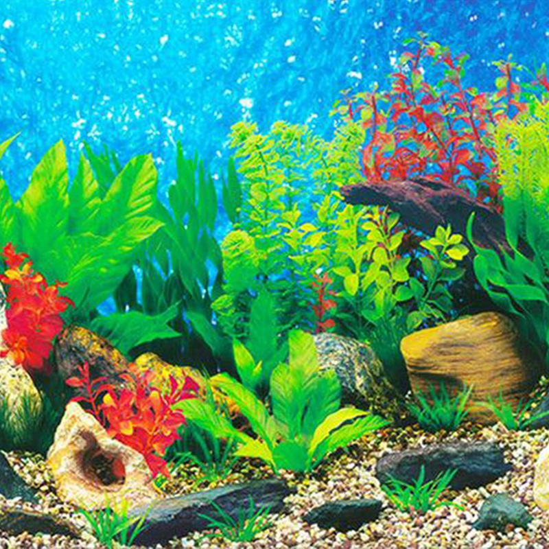 New Aquarium Background Paper Hd Picture 3d Three Dimensional Fish Tank Wallpaper Background Painting Double Sided Aquarium Deco Decorations Aliexpress