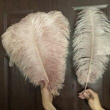 50 adet/grup deri pembe devekuşu darbs tüyü 15-65cm uzun doğal tüyler düğün süslemeleri için karnaval noel aksesuarları