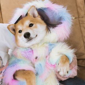Image 3 - Cute Cat Dog Clothes Dog Jacket Shirt Pet Clothing Rainbow Fur Dog Coat Puppy Pet Clothes France Bulldog Yorkshire ropa perro