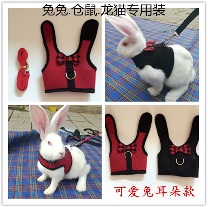 Break Free Hand Holding Rope Breathable Cat Anti-Rabbit Cute Back Type Retractable Dog Young Chinlon Dogs Nursing Walk A Cat Rop