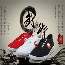 أحذية Taichi أحذية فنون الدفاع عن النفس أحذية Taiji لتدريب Taichi الكاراتيه التايكوندو وشو