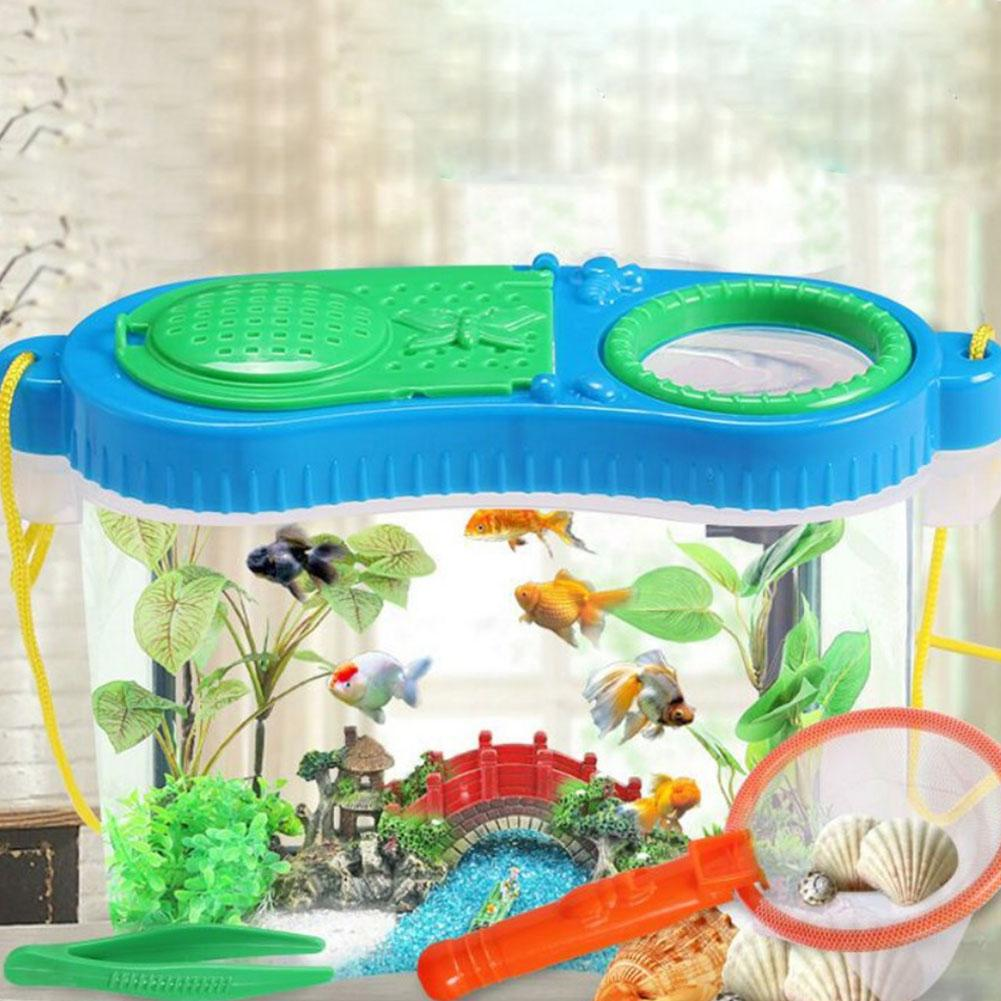 Early Childhood Education Experimental Research Plastic Tool Box Insect Feeding Observation Box Net Breeding Box Puzzle Toy