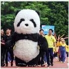 Inflatable Panda Bea...