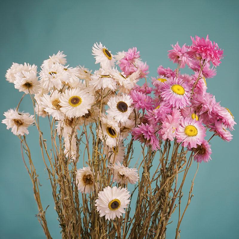 Домашнее украшение, ромашки, натуральные сухие цветы, букет, сухие на воздухе неувядающие цветы, настоящие натуральные цветы