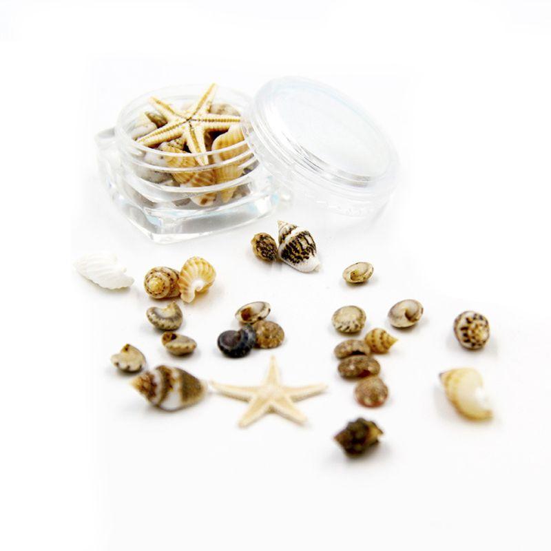 DIY A Box Small Natural Beach Seashell Star Fish Nautical Decor Nail Art Jewelry Making UV Resin Fillings Material