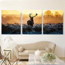 Oil Painting by Numbers 3PCS Split Series Elk Gold Tree Animal Canvas Kit for Adults & Kids Wall Art Home Decor