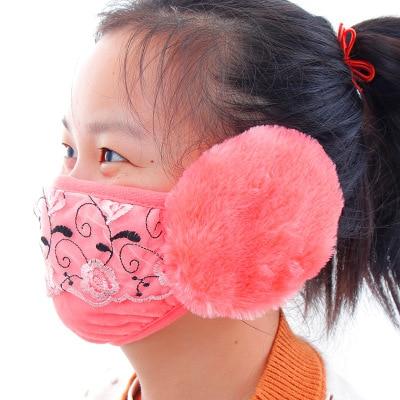 1pcs Women's Earmuffs Mask One Fashion Earmuffs Winter Warm Dust Mask