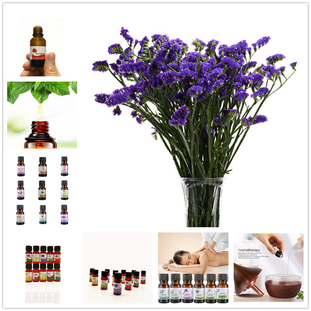 10ml Plant Fruit Essential Oils for Humidifier for Diffuser Epiphyllum Aromatherapy Oil Relieve Stress Lavender Skin Care TSLM2 image
